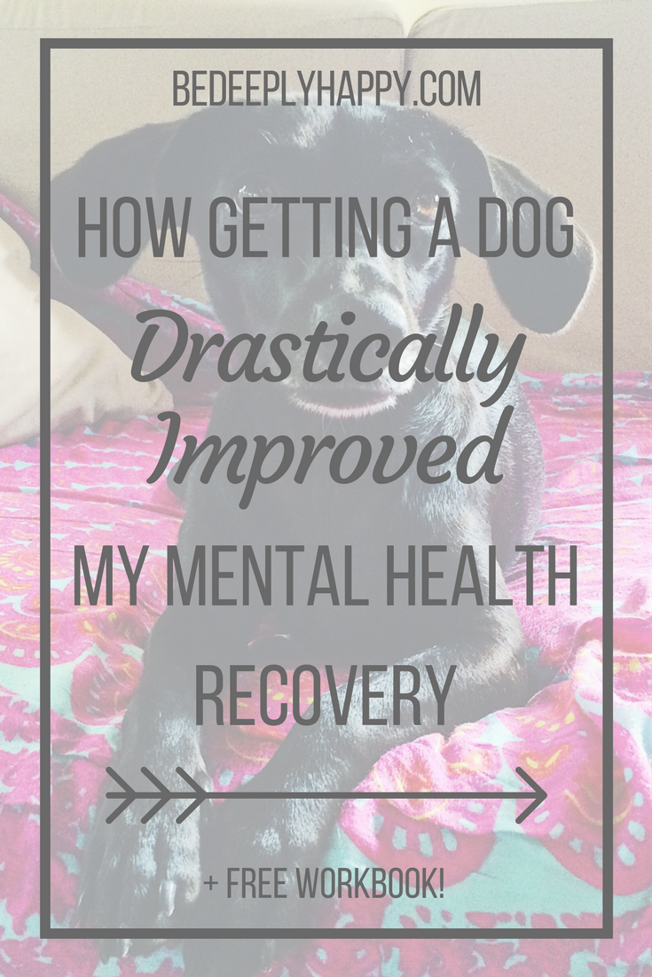 How Getting a Dog Drastically Improved My Mental Health Recovery ...