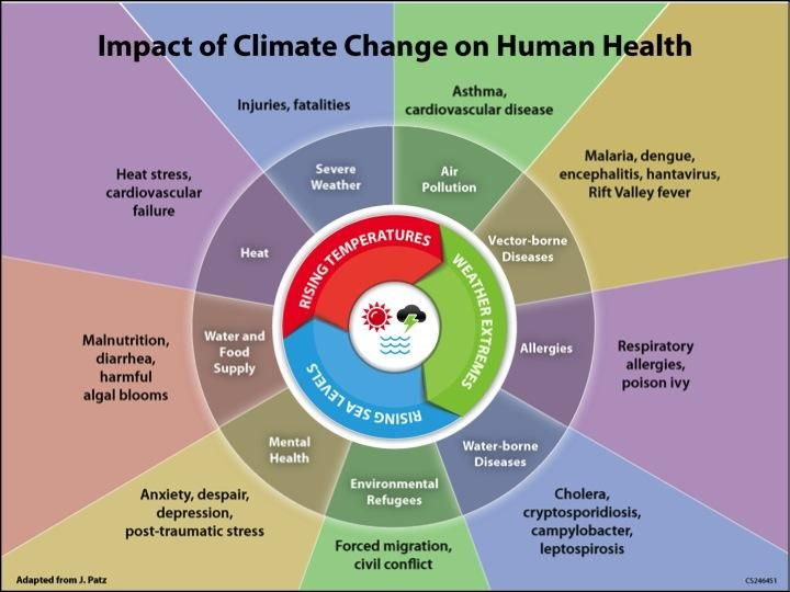 impact of climate change on bangladesh environmental sciences essay Climate change - issues related to the  environmental factors - environmental concerns that impact our daily lives  hydrology & hydraulics - sciences related.