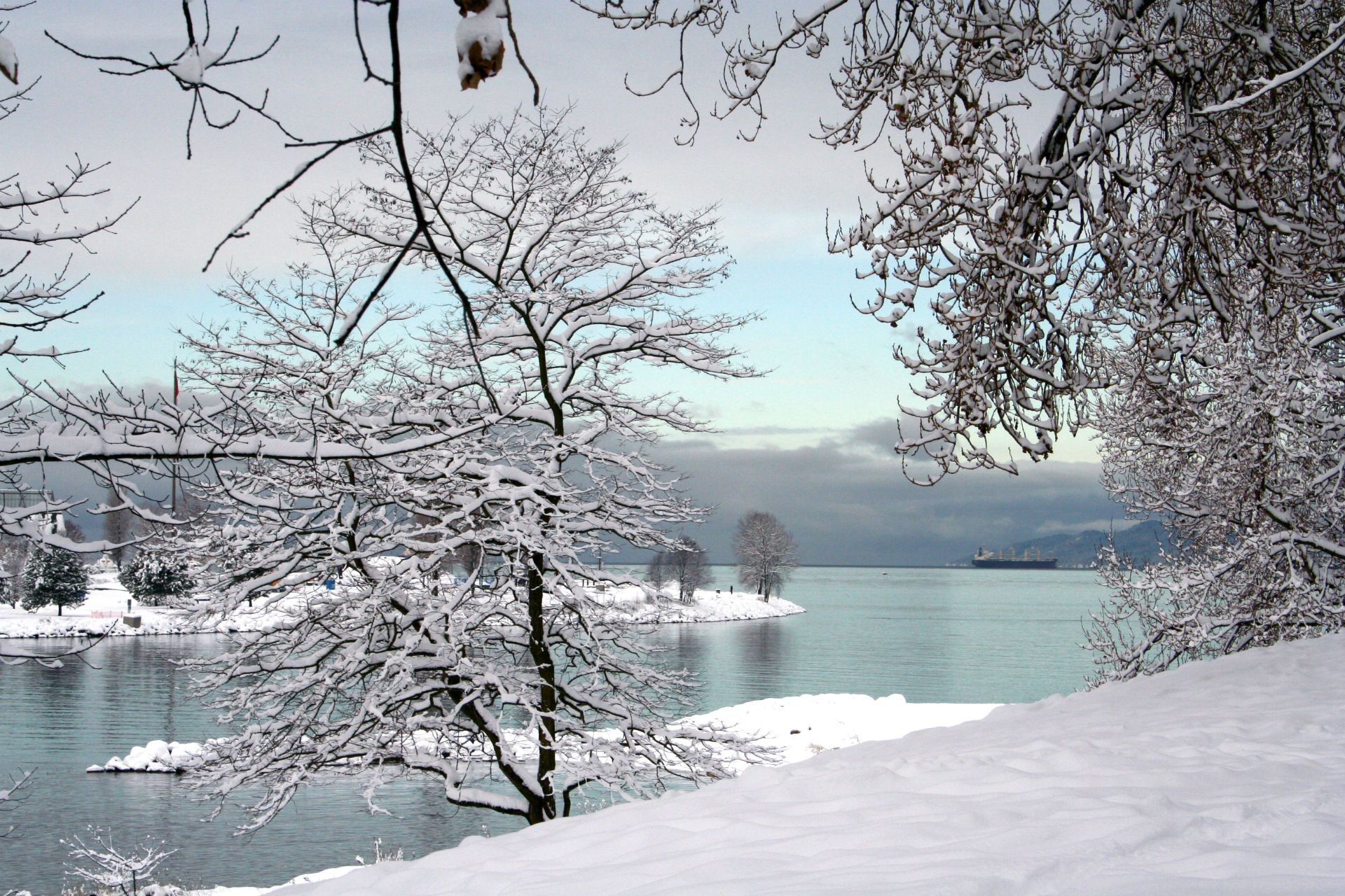 snowy winter scenes - Google Search | Winter Pictures ...