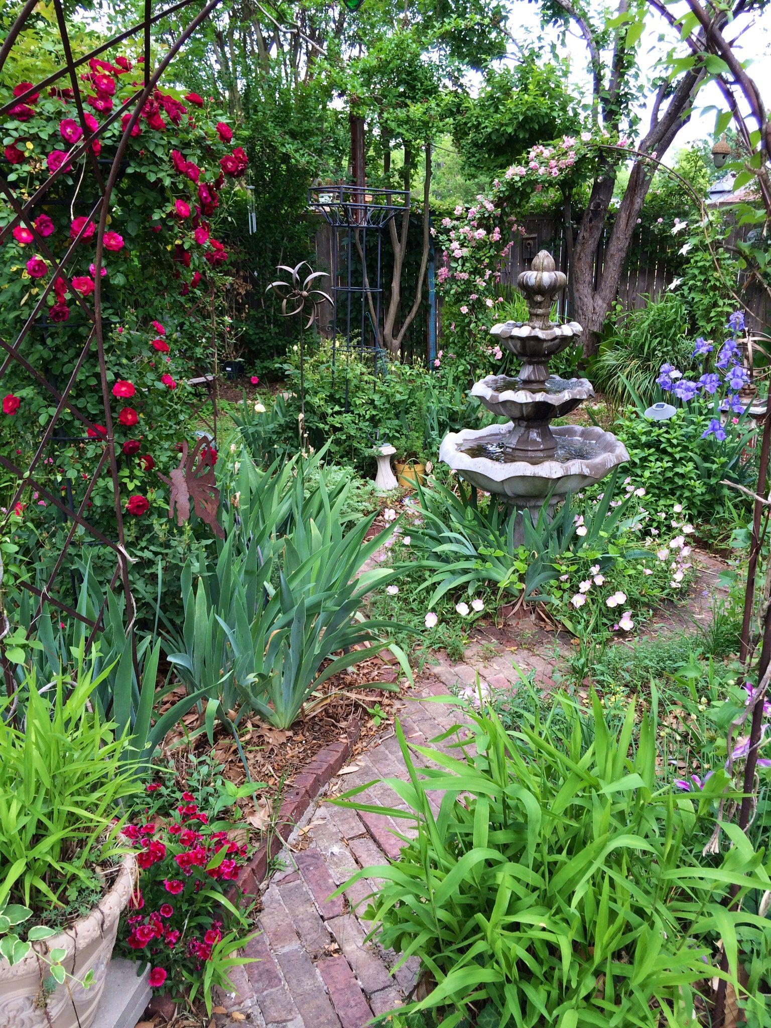 Roses, iris, and evening primrose