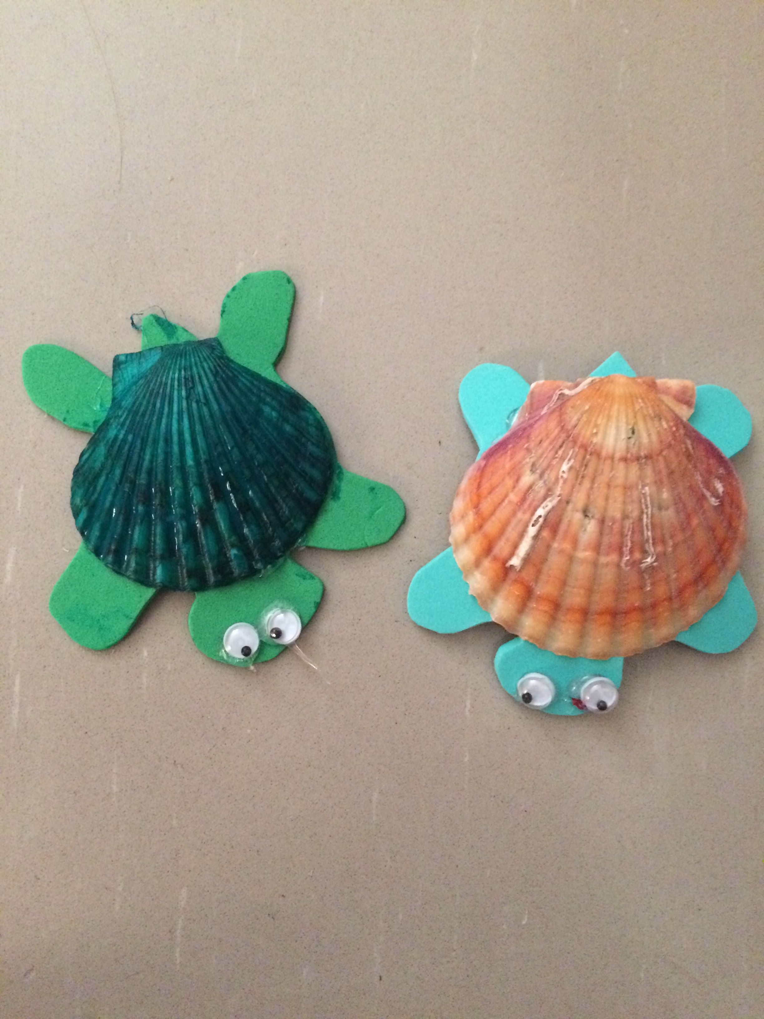 Cute turtle craft made with sea shells and foam easy for for Sea shell crafts