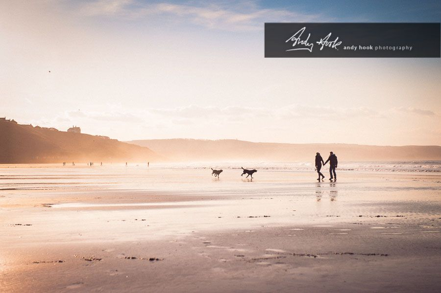 engagement shoot on the beach with the dogs