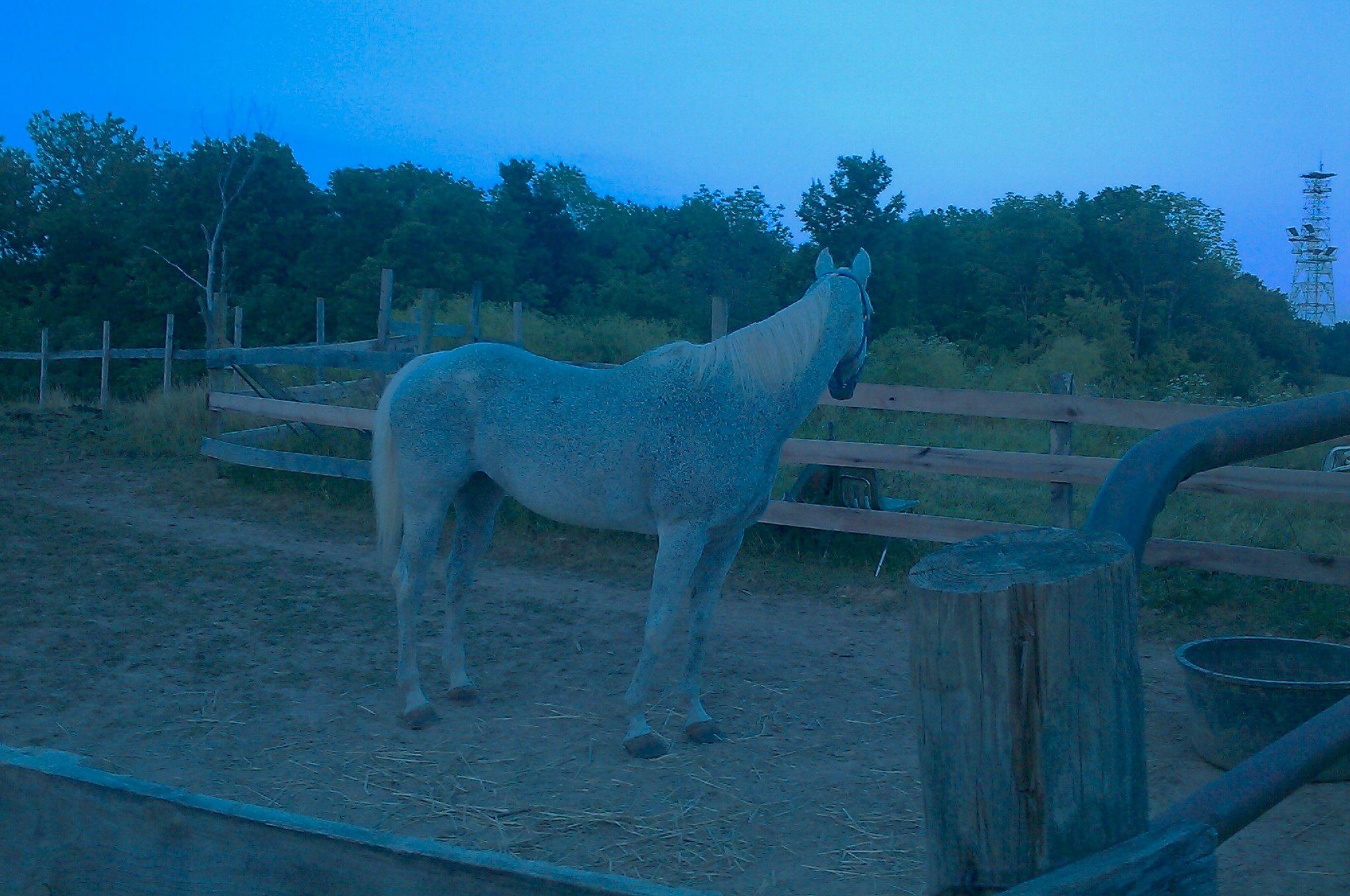 My baby girl indigo