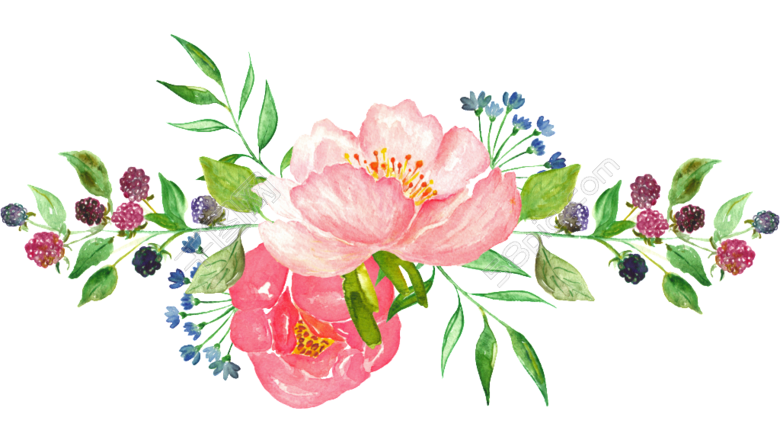 watercolor clipart transparent Google Search ดอกไม้