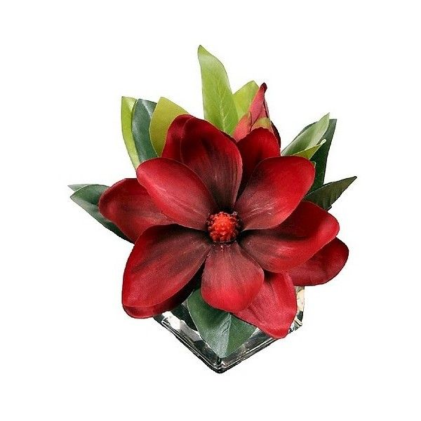 Artificial Arrangement Single Magnolia in Glass, Red (65 BRL) ❤ liked on Polyvore featuring home, home decor, floral decor, red, red cherry tree, faux floral arrangement, artificial arrangement, glass trees and artificial silk flowers
