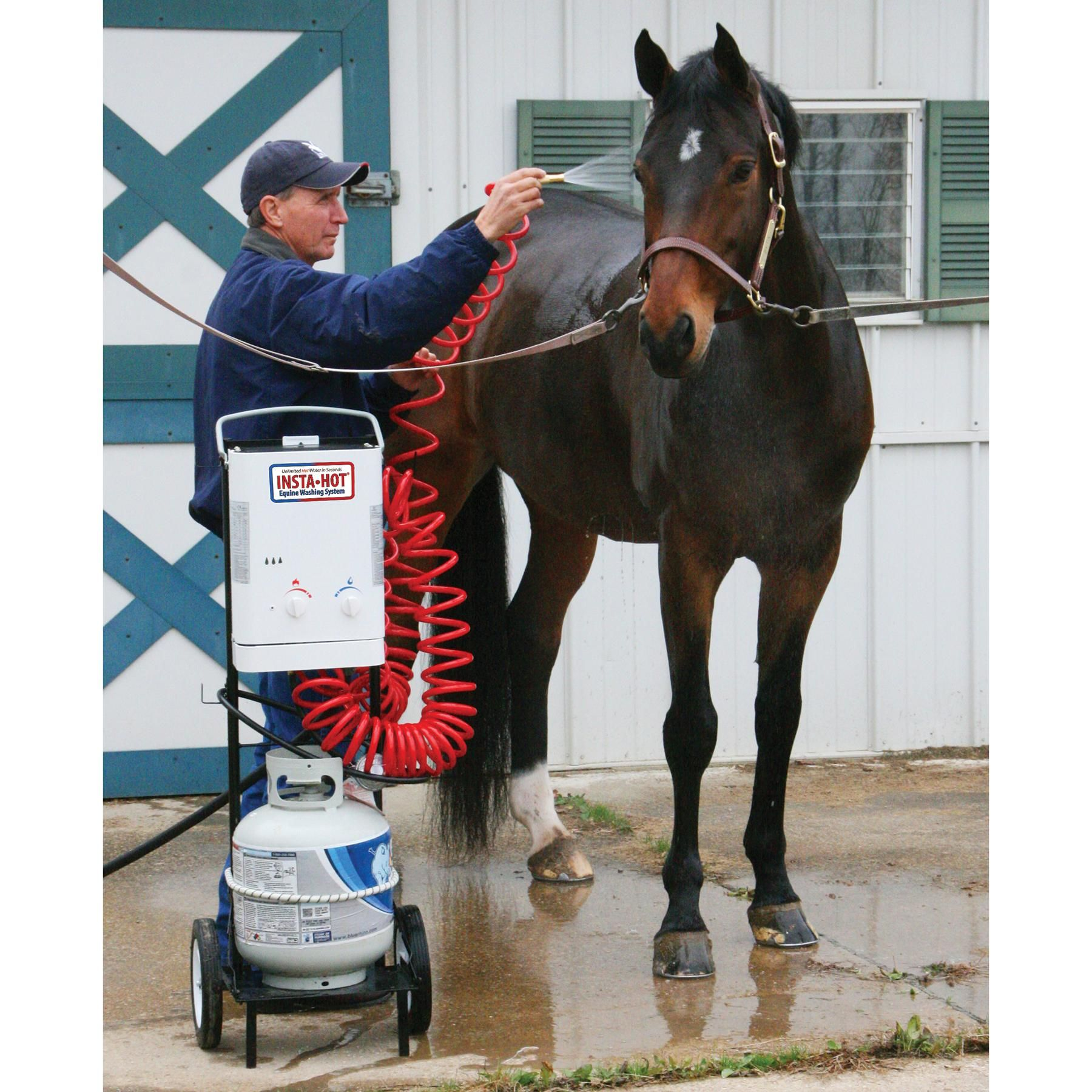 All Pet And Equine Supply