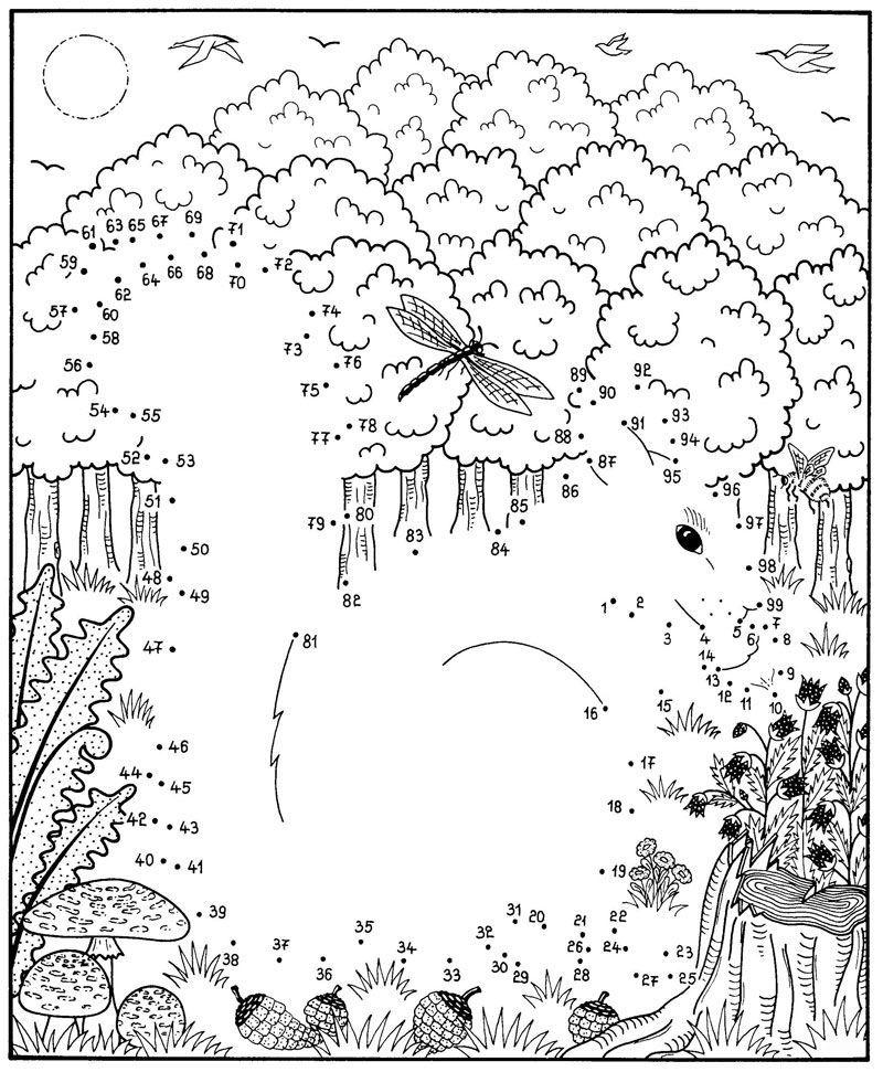 Ausmalbild Malen nach Zahlen: Malen nach Zahlen: Eichhörnchen ...