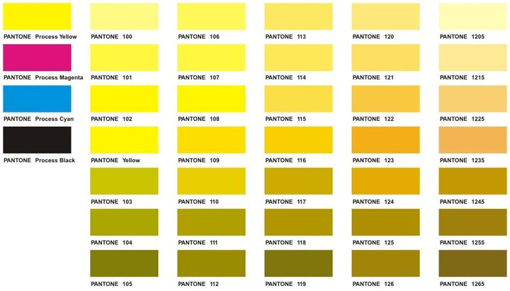 Pantone Color Chart  Executive Apparel  Yellow