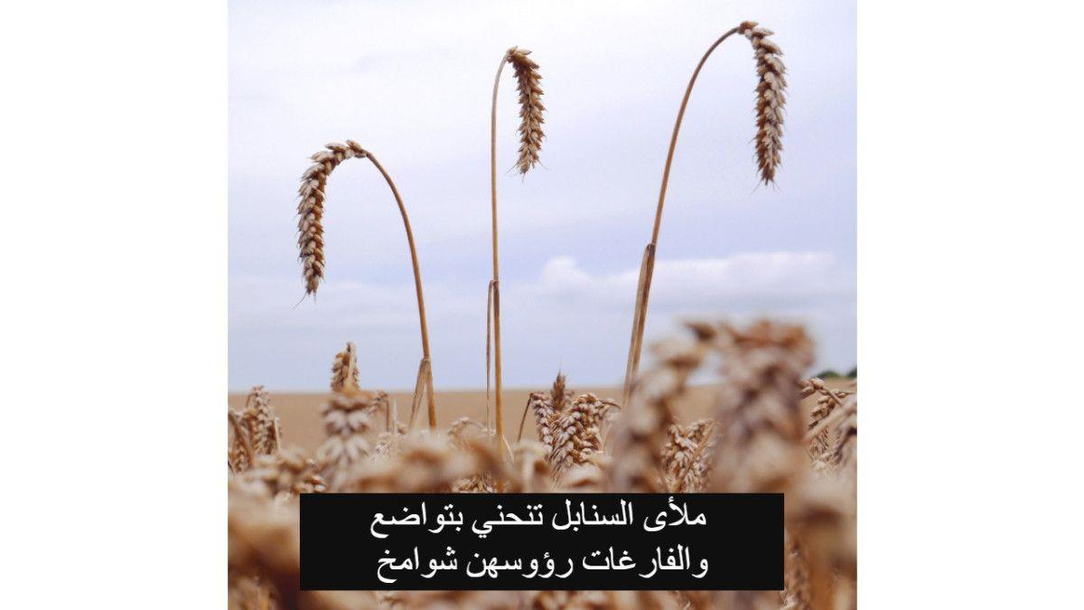 Pin On Arabic Words