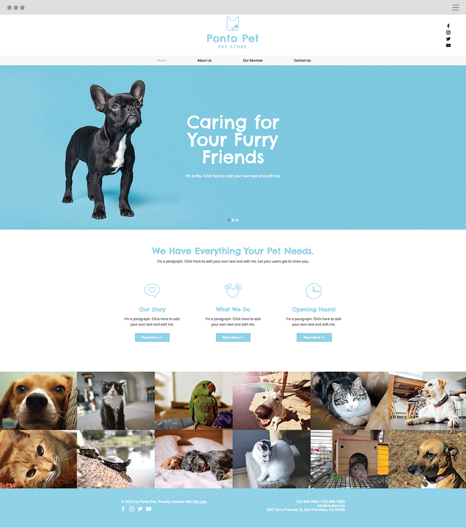 Pet Shop Website Template Wix templates, Website