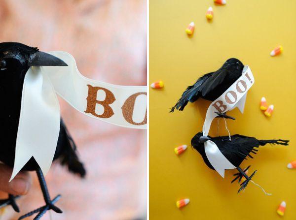 birdspair