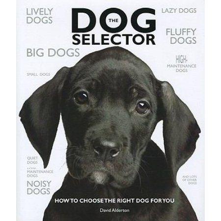 Books Dane Dog Great Dane Puppy Great Dane Dogs