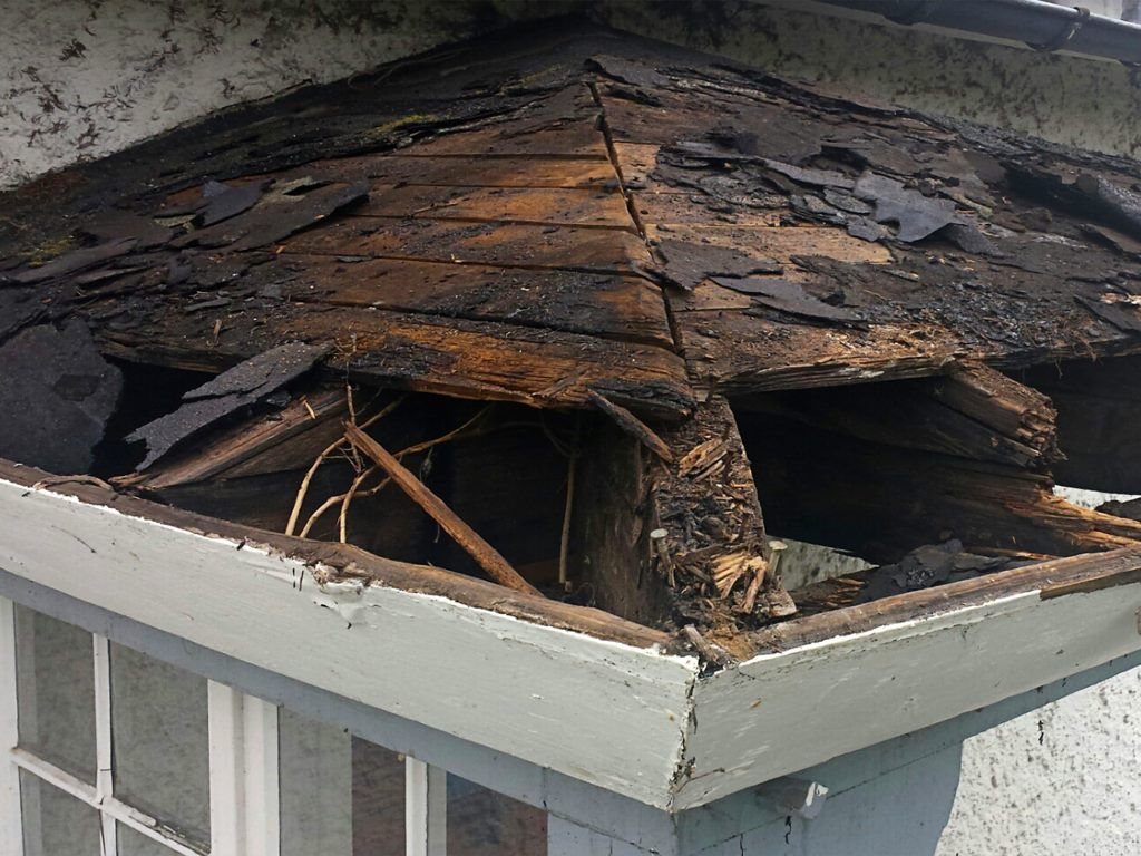 Reasons Why You Need To Have Your Leaking Roof Repaired On Time In 2020 Leaking Roof Roof Repair Roof Repair Diy