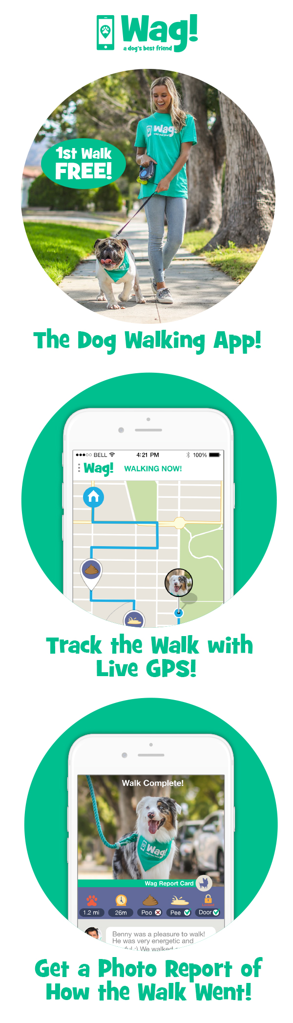 """Think Uber for dog walkers"" New York Times Dog"