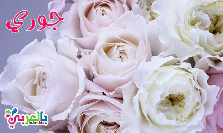 معنى أسم جوري Rose Plants Flowers