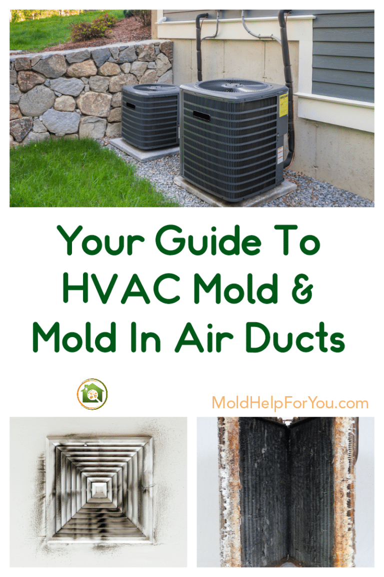 How do I know if I have mold in my air ducts? How do I