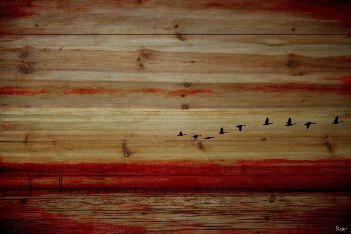Parvez taj flying south pine wood art print on natural pine wood