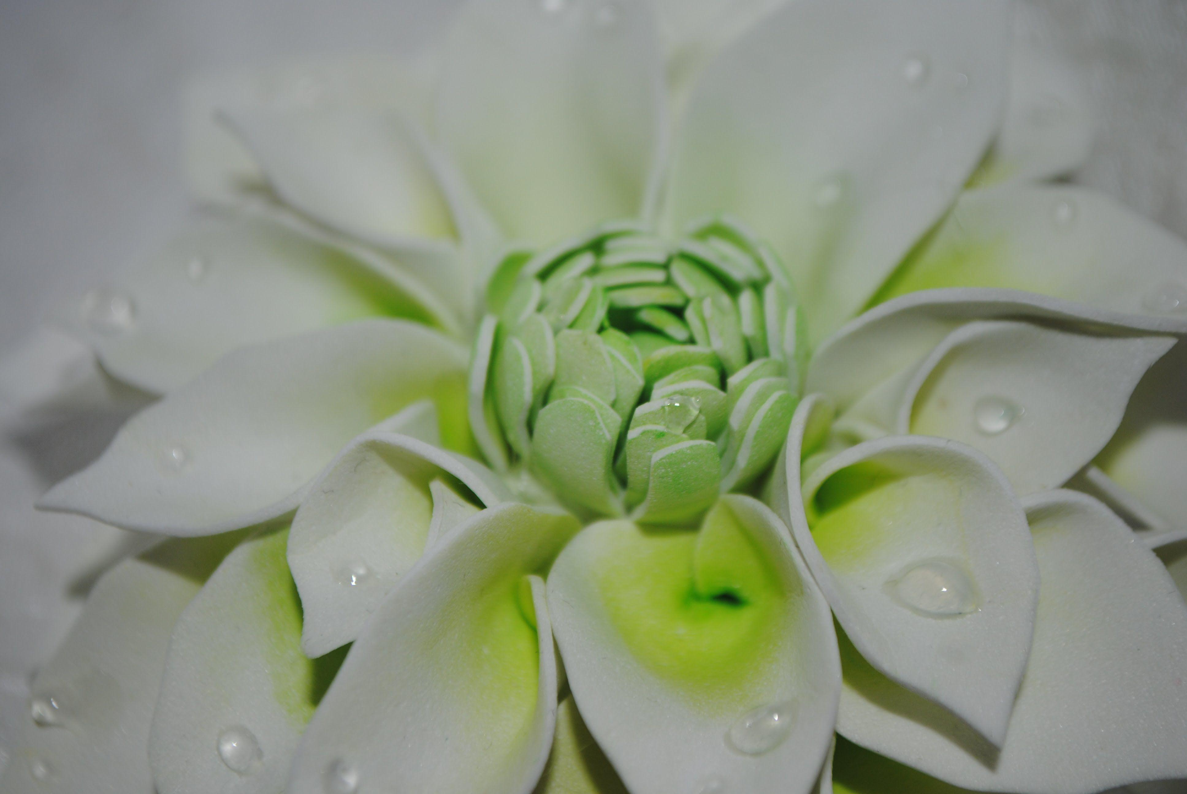 Цветок георгин из фоамирана мастер класс 65