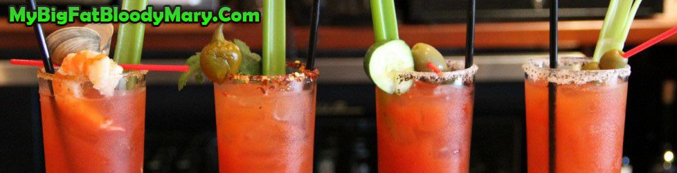 Best Bloody Mary Recipe - Perfect Brunch Cocktail