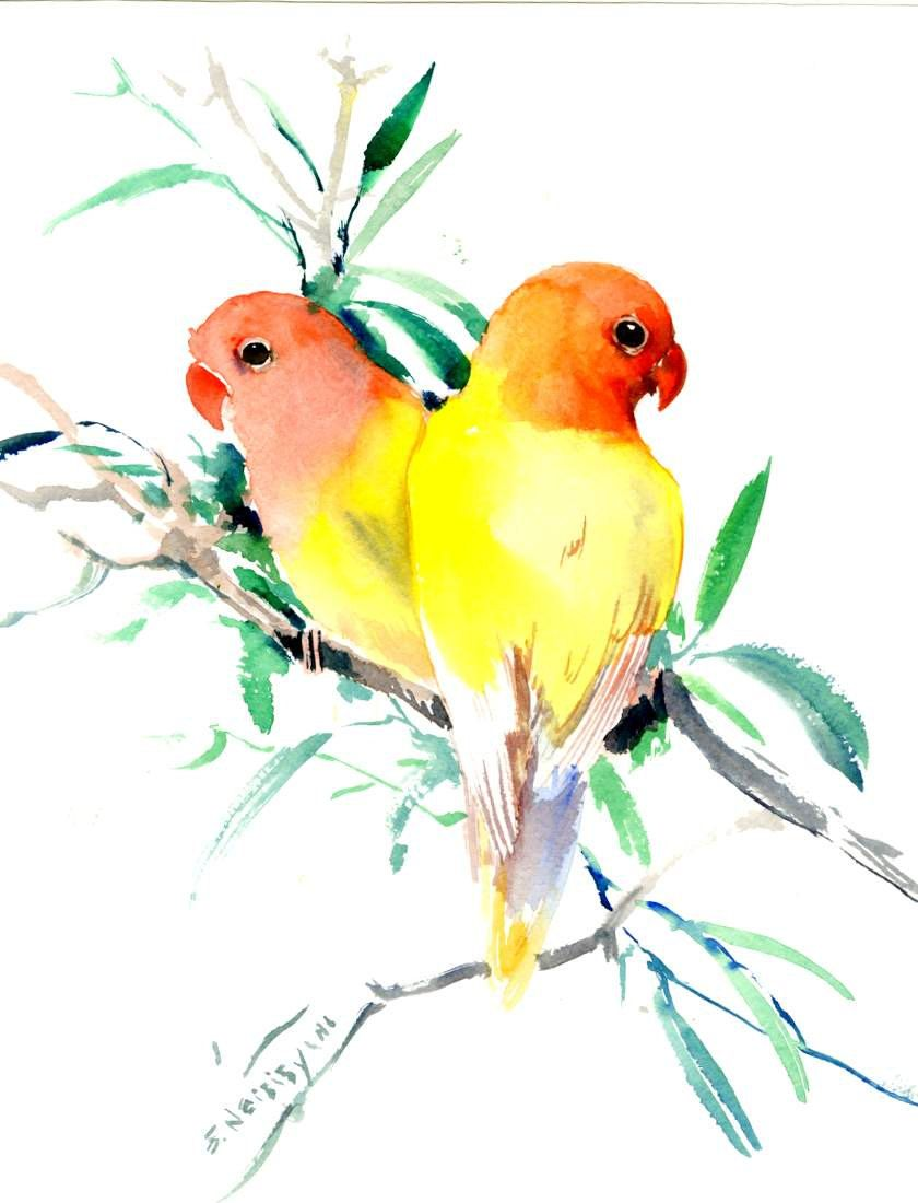 Yellow Lovebirds Yellow Lovebird Art Two Birds Original