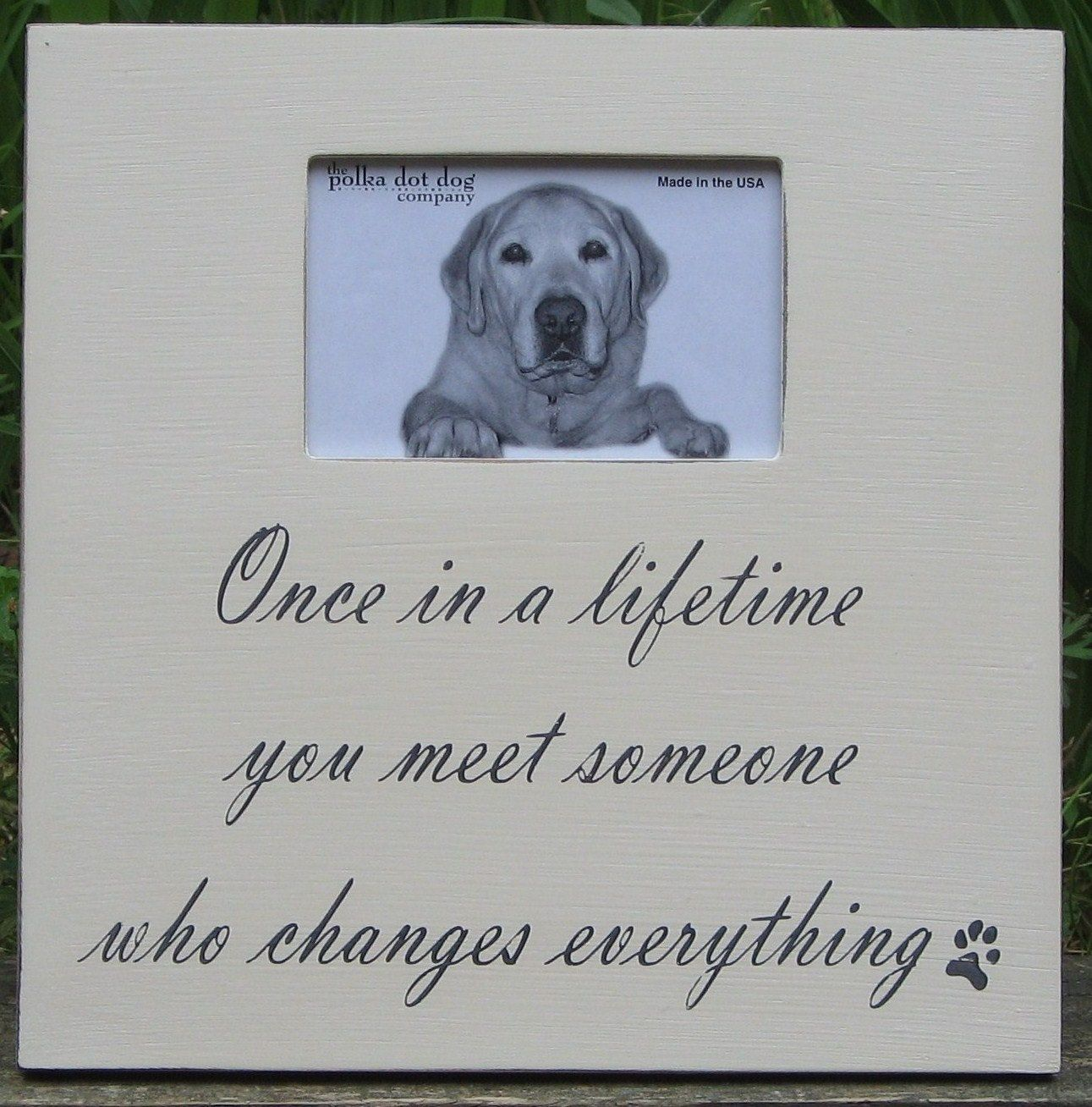 distressed picture frame for the pet and pet lover - 4 x 6 ...