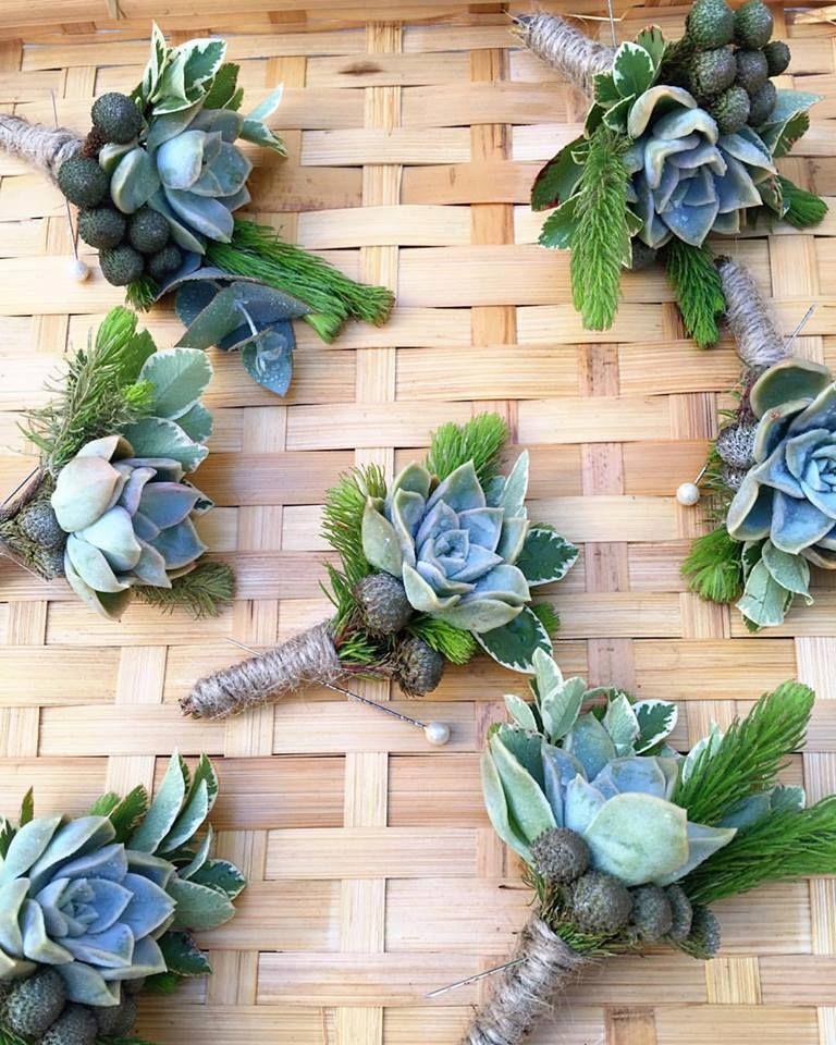 Garden Decor Cape Town: Succulent Buttoneirs/Buttonholes Made For D&D Wedding At
