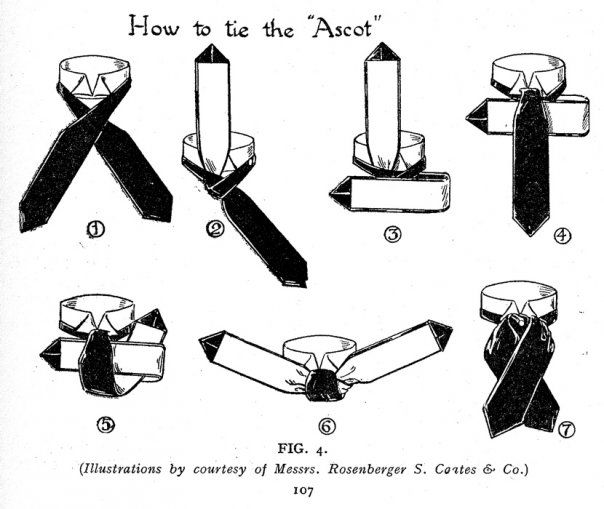 How To Make An Ascot Tie Me And My Girl Ascot Ties Cravat Tie