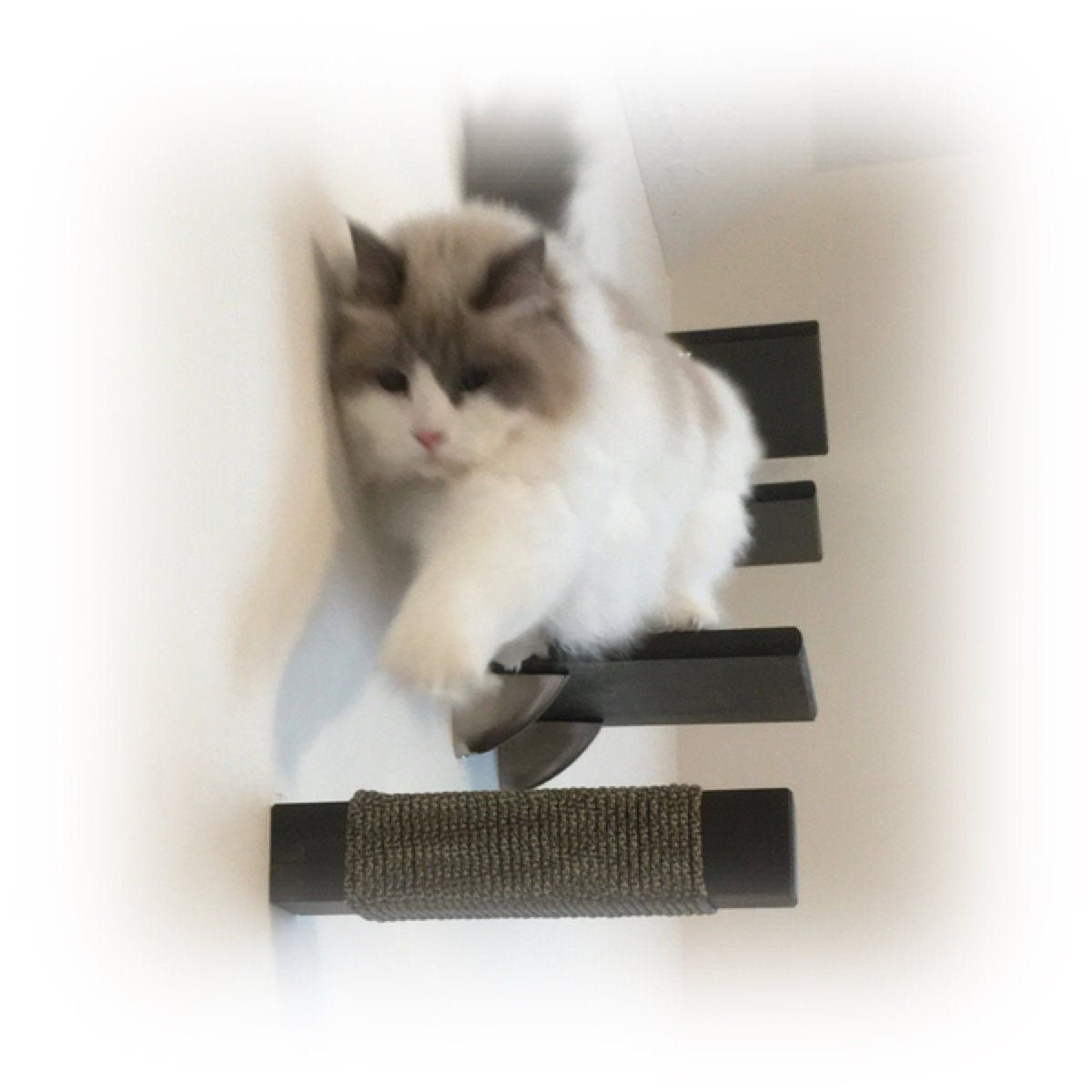 Floating Cat Post Wall Step Solid Hardwood Post Square Or Etsy Stair Shelves Cat Wall Furniture Cat Post