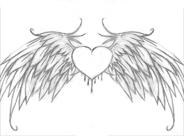 drawing heart of with bird wings tattoo heart with wings by bio rh pinterest com heart with wings and crown drawing heart with wings drawings step by step