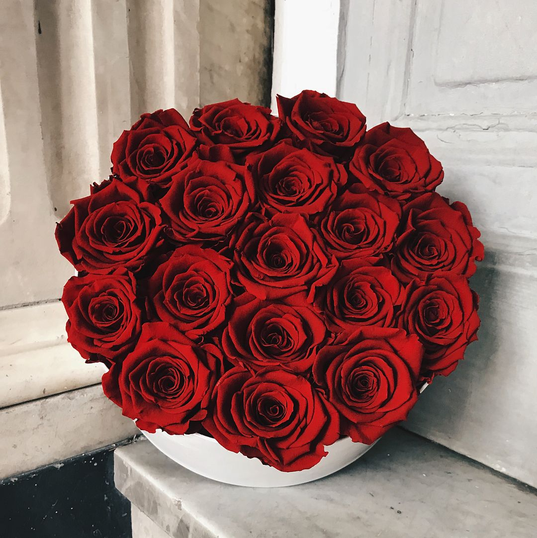 Real Roses That Last A Year No Water Ever Needed Настоящие розы которые