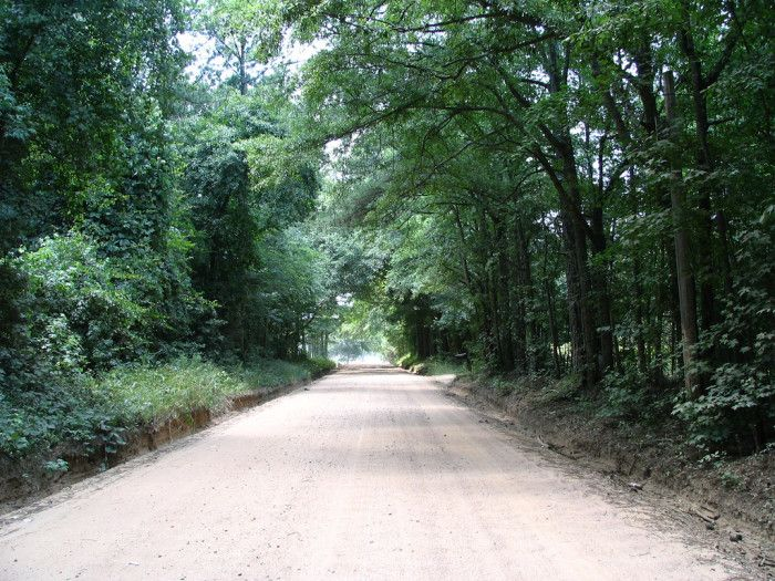 11 Country Roads In Georgia For A Scenic Drive
