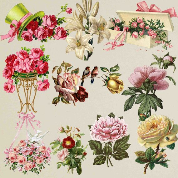 16++ Free floral clipart graphics ideas in 2021