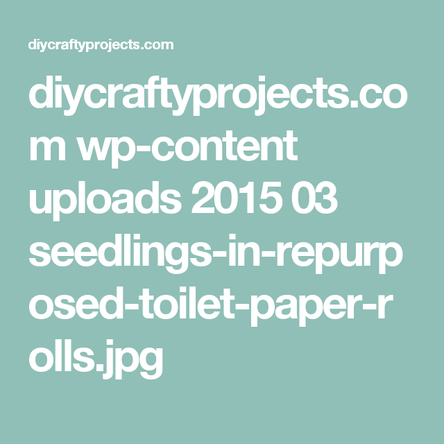 diycraftyprojects.com wp-content uploads 2015 03 seedlings-in-repurposed-toilet-paper-rolls.jpg