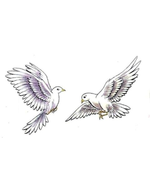 White Doves Tattoo Dove Tattoo Dove Tattoos Pigeon Tattoo