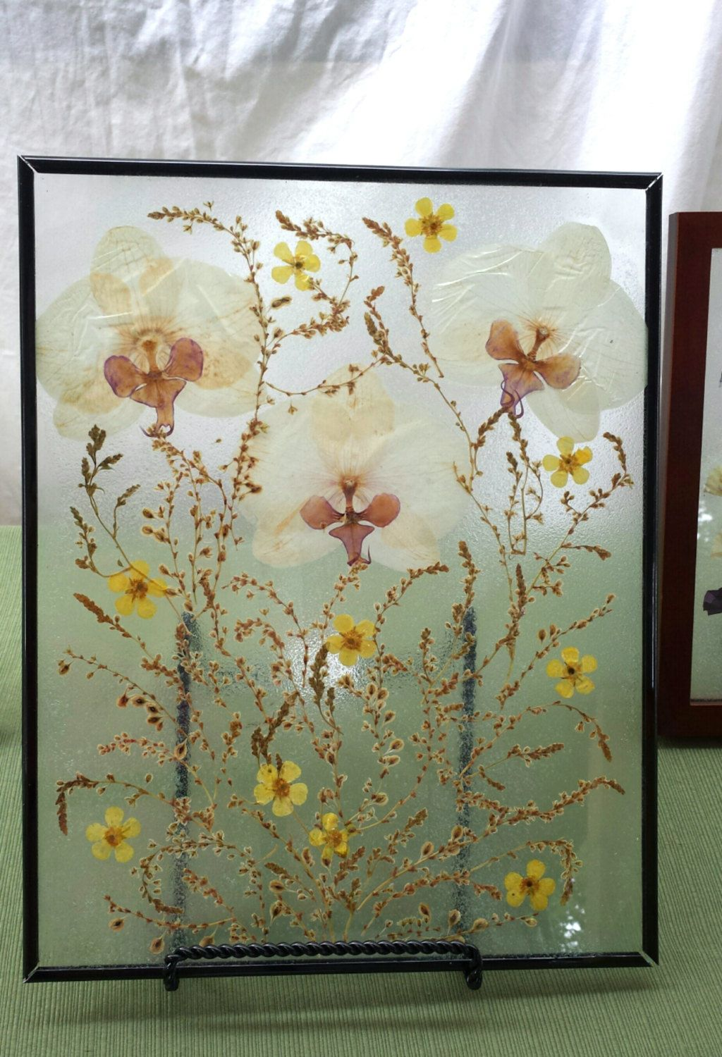 Real Pressed Flowers And Orchids Vine On Glass Floating Glass Frame