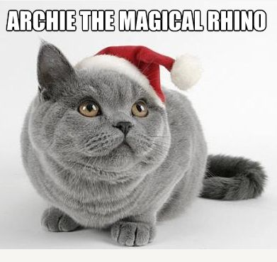 20 Ridiculous Cat Names | Animals | Funny cats, Christmas