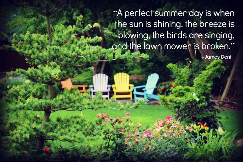 Flowering Wisdom With Images Garden Quotes Landscaping