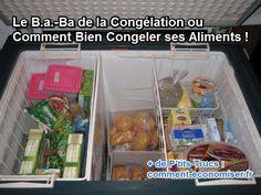 Le Ba Ba De La Congélation Ou Comment Bien Congeler Ses Aliments