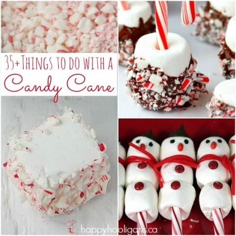 17++ What to do with leftover candy canes information