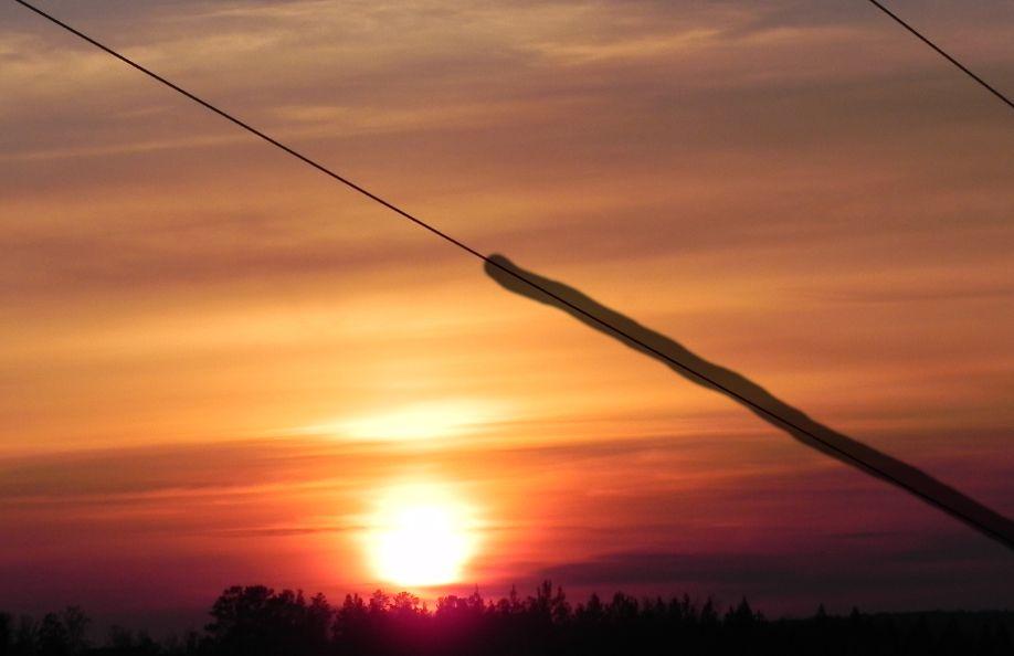 Удаление проводов. Фото Evgenia Shveda