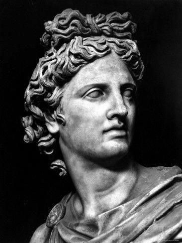 'Head of the Statue of Apollo Known as the Belvedere' Photographic Print - | AllPosters.com