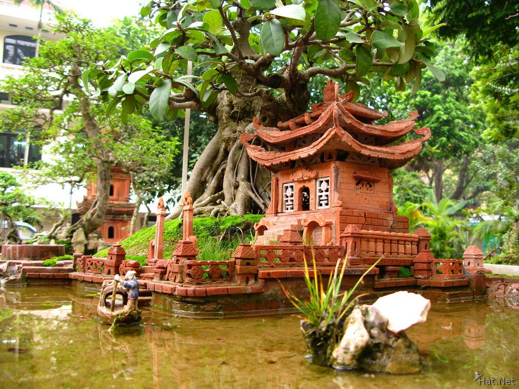 boatman tree   Indo-chinese garden by Carl Fisher   Pinterest ...