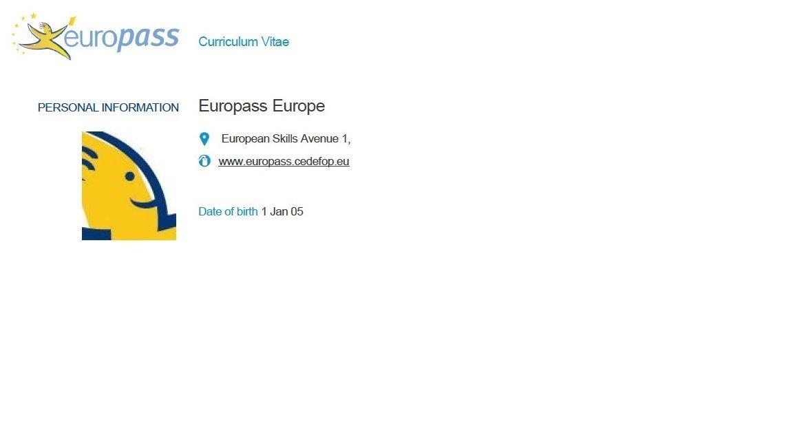 Preview Of The New Europass Cv Format Good Cv Cv Tips Cv Format