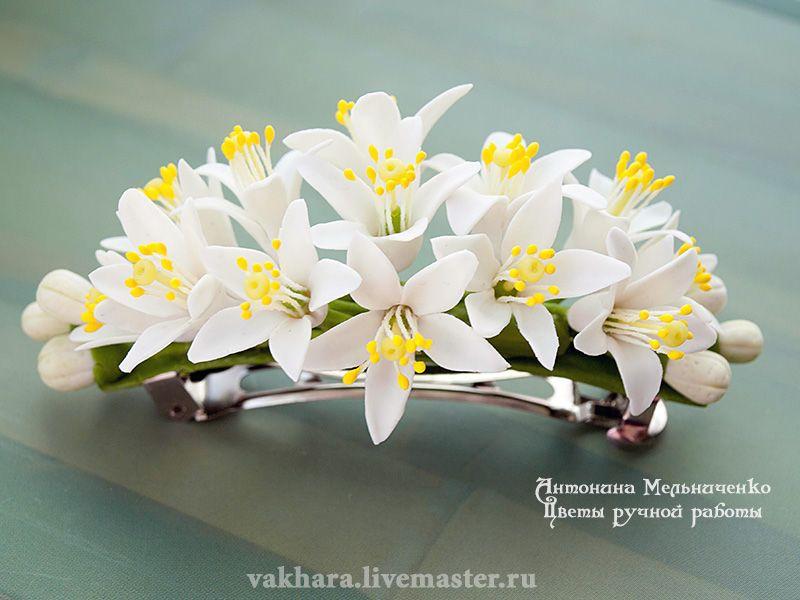 Комментарии на фото с цветами