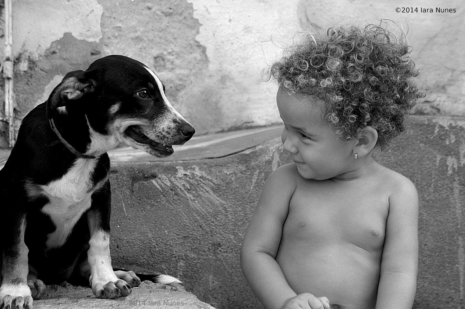 Olhares Inocentes | by Iara Nunes84