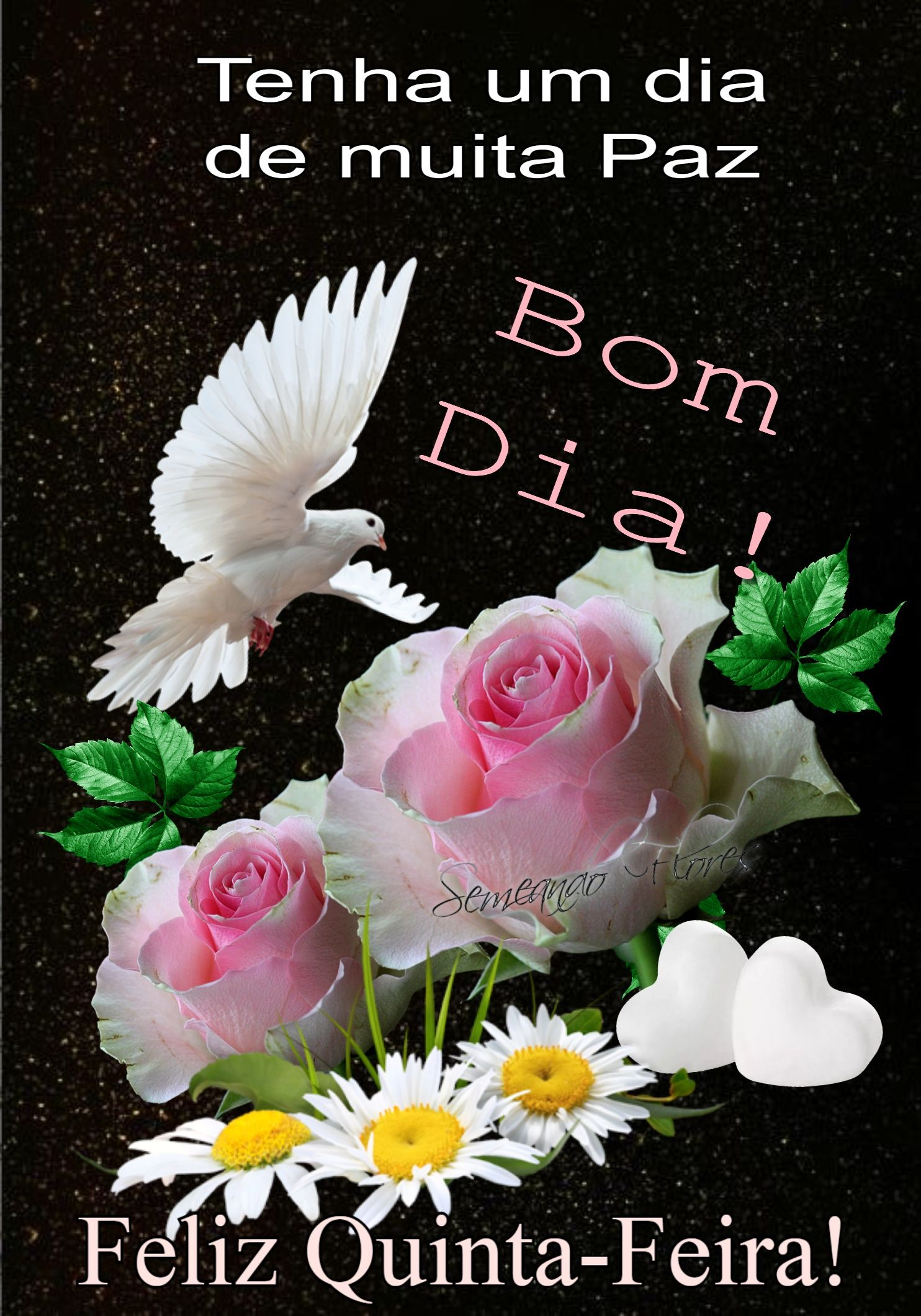 Pin De Maria Elena Em Imagens De Bom Dia Bom Dia Com Flores