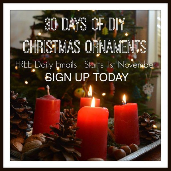 30 Days of Christmas Ornament ideas - get free daily updates to keep you crafting