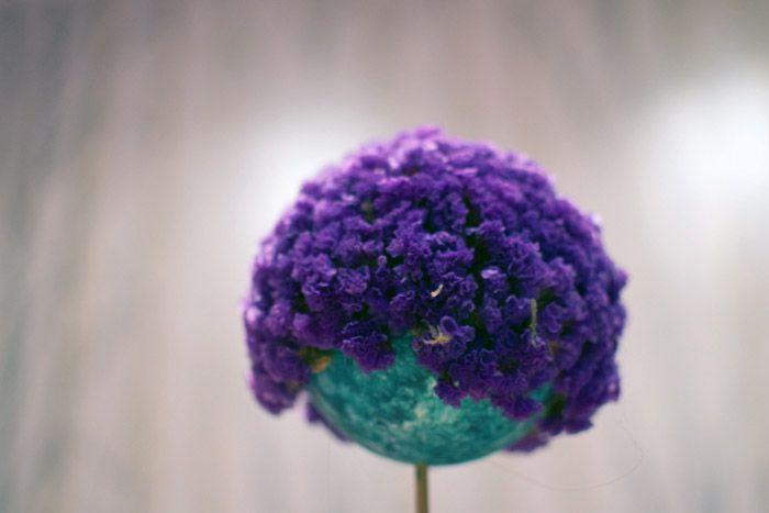 Bolas de porexpan con flores secas Hadas y Cuscus flores secas - flores secas