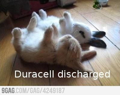 Duracell discharged