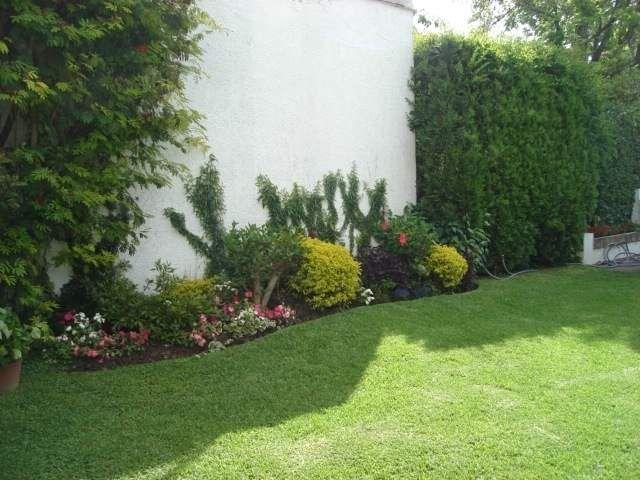 Cuidados b sicos para un bello jard n patios gardens and walled garden - Cuidado de jardines ...